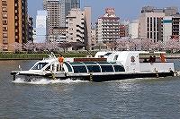 mizu-haru-7s